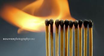 elegant flame
