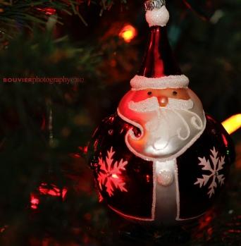 Rotund Santa