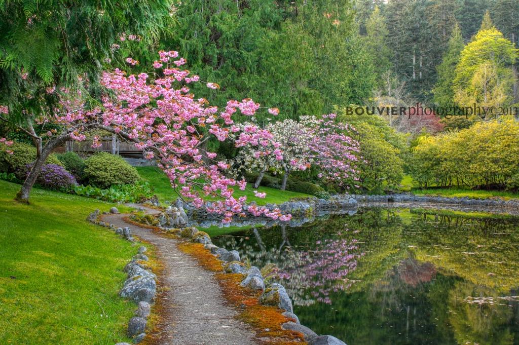 along the garden's path