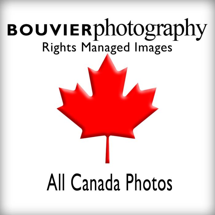 All Canada_2