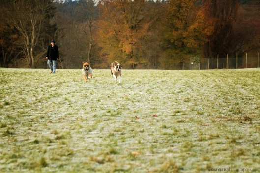 Running toward their mum.
